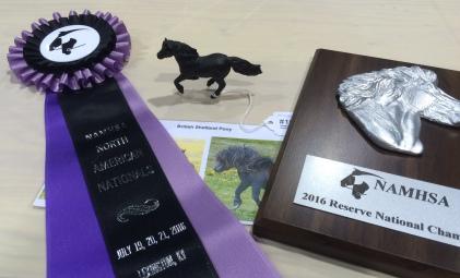 NAN 2016 - Reserve Champion UK Pony