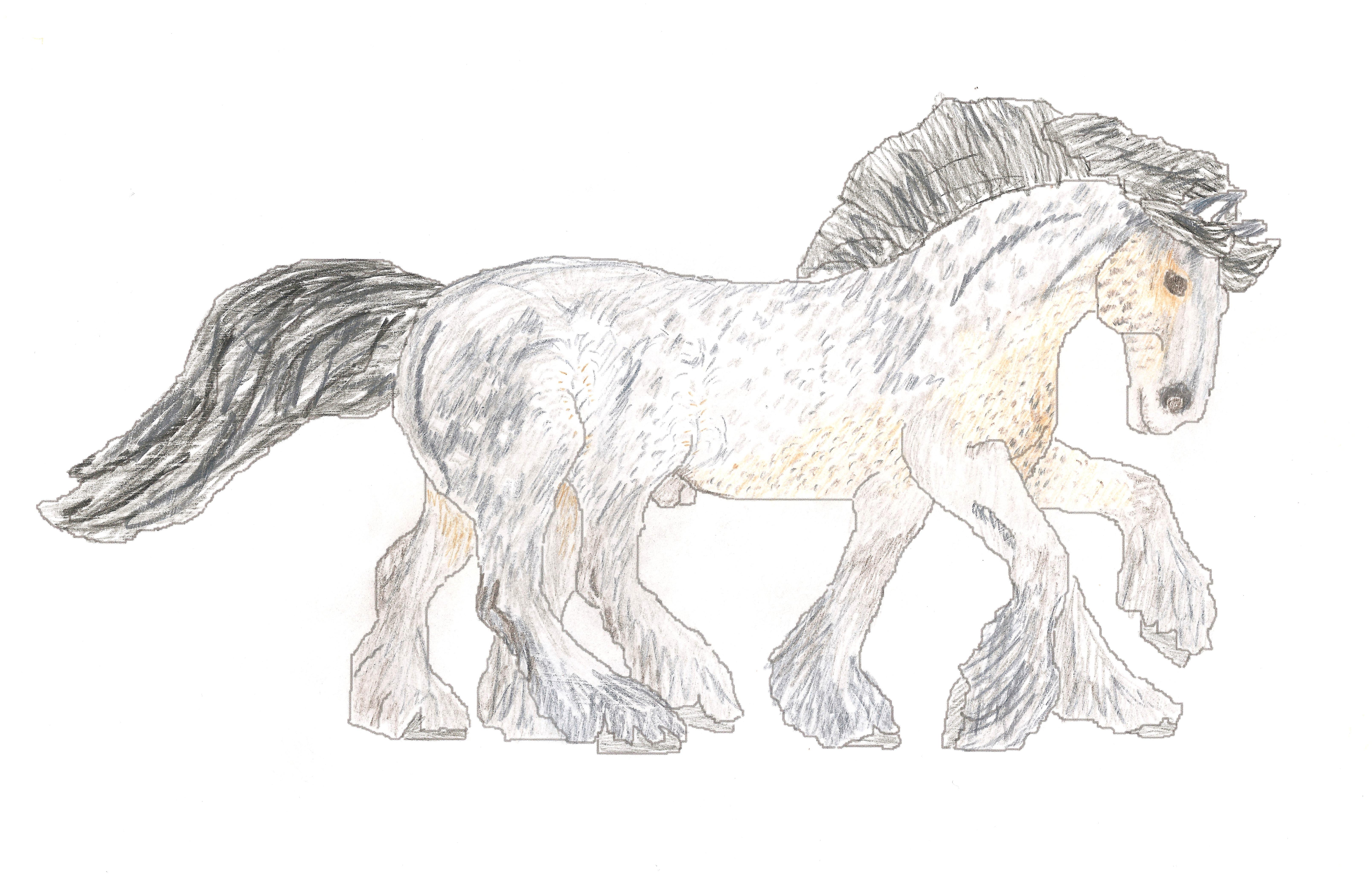 sleipnir shoestring stable