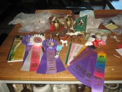Ribbons and prizes from MEPSA Year End Show