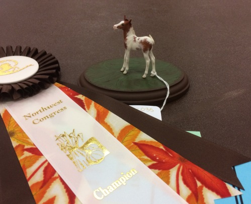 Hovito winning Champion AR Mini Foal at NW Congress this month.