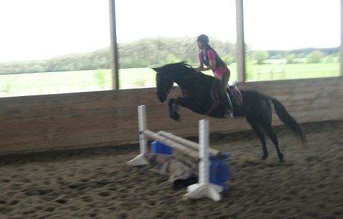 cochise - blanket jump2