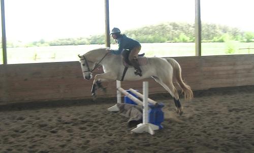 robyn - perfect jump2