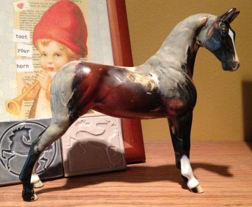 WIP saddlebred 5-17-13