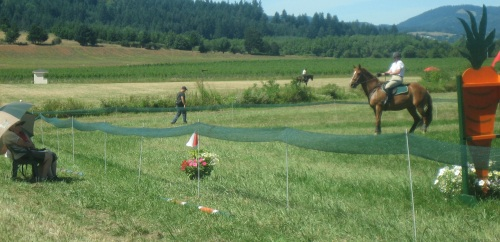 This gelding was a total packer in the XC phase, but he could not get past the deadly umbrellas and was eliminated.