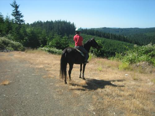 On a trail ride, summer of 2011