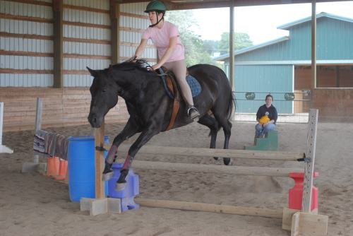 Jumping bridleless, 2012