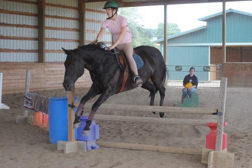 Jumping bridleless, 2012