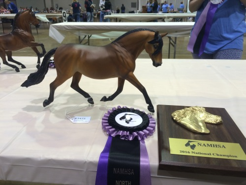 Mackenzie Purdy's beautiful Catarina winning Champion Lusitano/Andalusian.